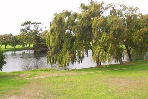 View of Marmion Reserve and lake, nearby St Ives Melville retirement village