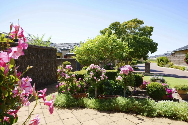 Brightly-coloured gardens along the fronts of villas at St Ives Murdoch retirement village