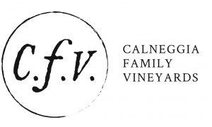 CFV_Logo-type_h